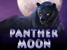 Автомат Новоматик Panther Moon