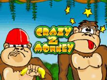 Игровые автоматы Crazy Monkey 2 от Игрософт