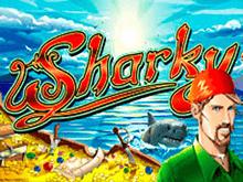 Sharky - бесплатные игровые автоматы от Новоматик