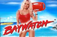 Baywatch — автомат на деньги